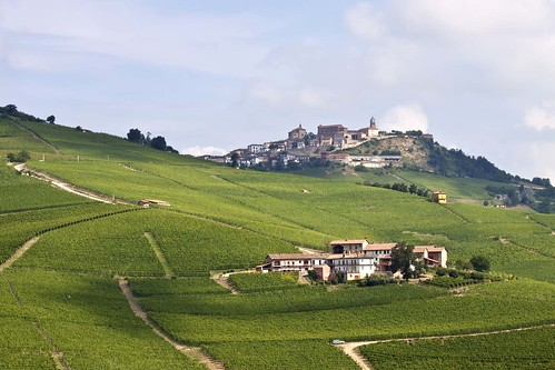 Langhe | by Francesca Cappa