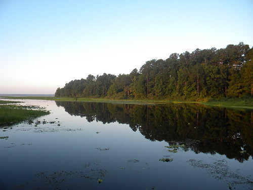 sky reflection tree nature water river landscape fl palatka nikoncoolpixl100
