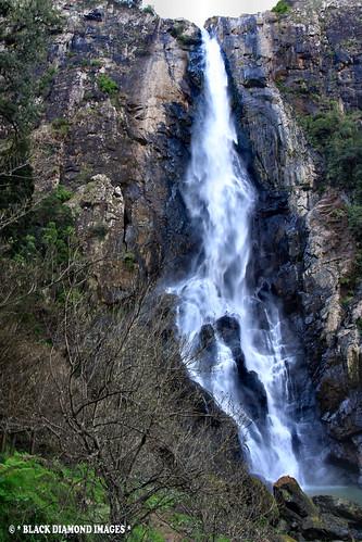 tourism waterfall australia falls waterfalls valley nsw manning wingham bdi ellenboroughfalls midnorthcoast elands manningvalley bulgaplateau manningvalleytourism boorgannaflorareserve