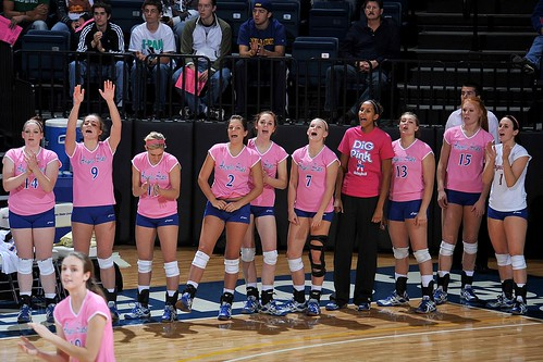 "Volleyball ""Dig Pink"""