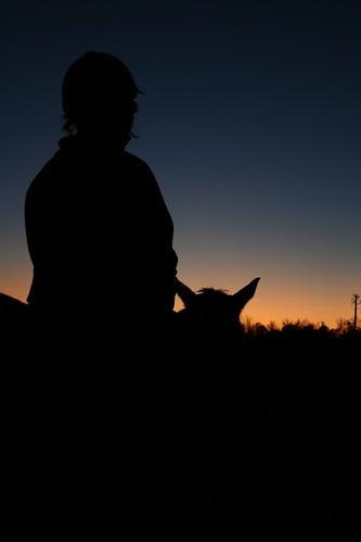sunset sky horses horse fredericksburg colorphotoaward aplusphoto skytheme colourartaward goldstaraward skyascanvas