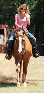 Equestrian Center Offers Outlet For Horse Lovers No