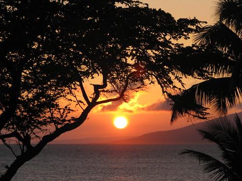 ocean friends sunset silhouette hawaii ash smoky mauisunset qualitypixels kunstplatzlinternational brendamb