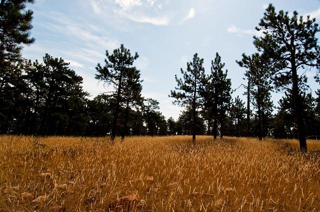 20090823_Heil_Valley_Ranch127