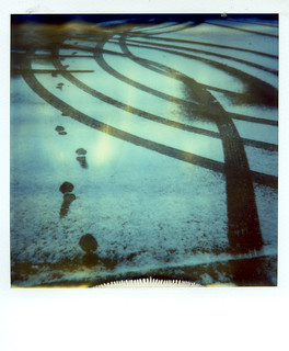 Polaroid Week Image #5
