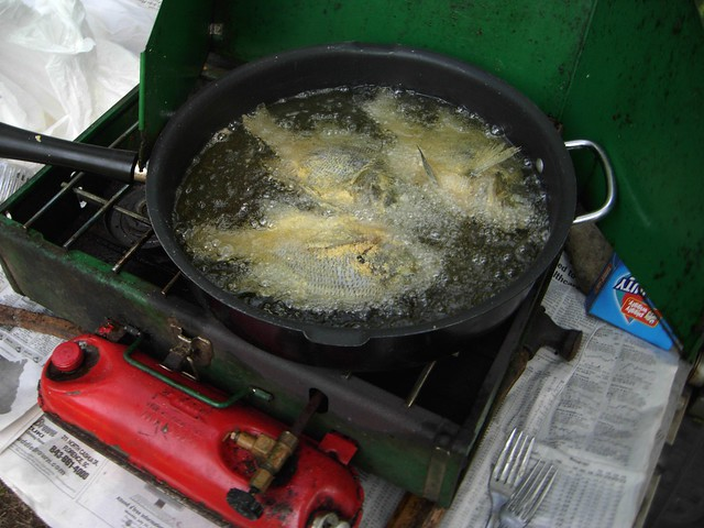 Fried fish. Just caught and cleaned.