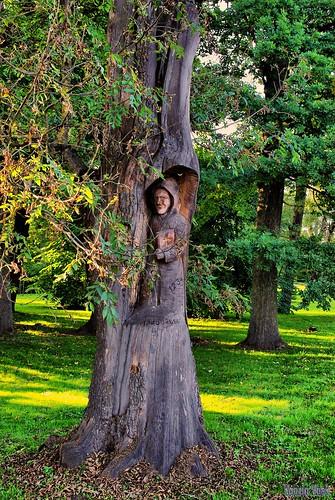 trees tree clouds geotagged estonia pentax 2009 km est palamuse dynamicphotohdr vftw vanagram pentaxart