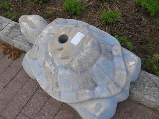 Helsinki Turtles
