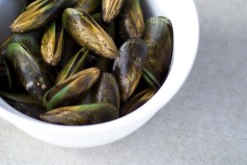 Green-Lipped Mussels | by Ty Nigh
