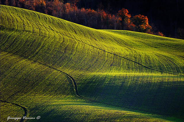 Val d'Orcia 5