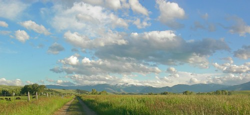 blue trees sky panorama sunlight white mountains green nature grass clouds landscape montana colorful scenic absarokamountains