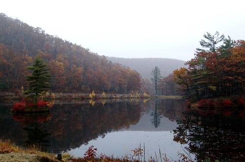 autumn reflection massachusetts leominsterstatepark