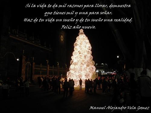 Feliz Año Nuevo 2010 LAE Manuel Vela