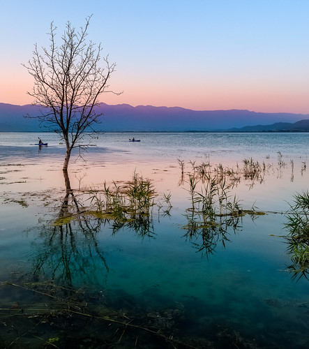 light sunset sunlight mountain lake reflection tree nature water colors silhouette reflections landscape coast waterfront sundown outdoor dusk illumination illuminated macedonia shore sunsetlight singletree goldenhour clearsky lakescape dojran lakedojran