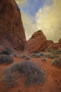 Valley of fire | by ronphoto2009