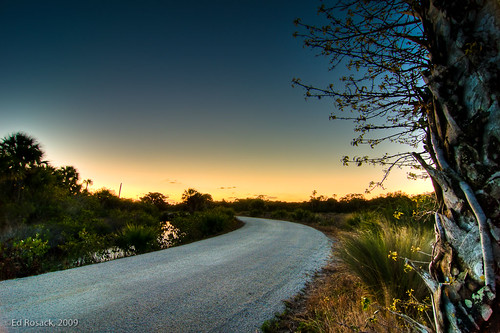 Blackpoint Wildlife Drive: Wide angle, winter dawn | by Ed Rosack
