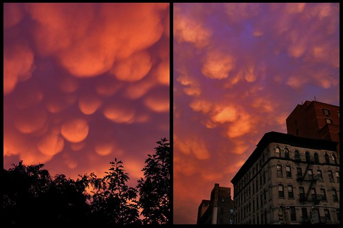 the day new york descended into hell by kolored
