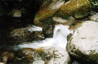 River | by shirtnpants