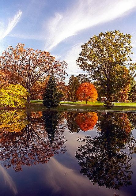 """Cincinnati - Spring Grove Cemetery & Arboretum """"Autumn Reflection"""""""