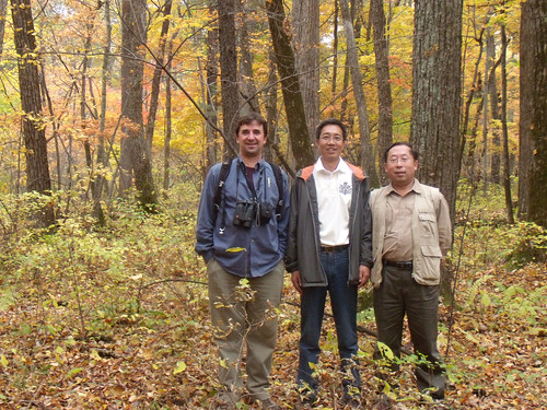 Sun, 09/27/2009 - 15:13 - Stuart Davies, Hao Zhanqing and Ma Keping. Changbaishan 25-ha plot. September 2009.
