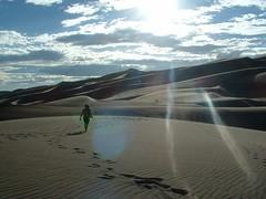 Up the Dunes | by huevosalapolaca
