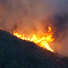 2009-10-25_Loma_Fire_03