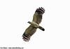 White-collared Kite_Leptodon forbesi by Ciro Albano - NE Brazil Birding