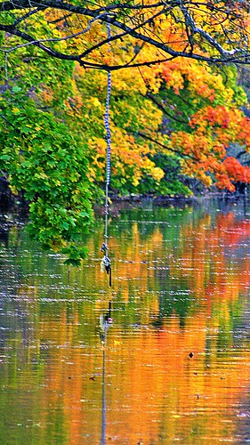 autumn trees reflection tree fall nature water reflections landscape photography pennsylvania fallfoliage fallscenery eastonpa supershot northamptoncounty bushkillcreek autumnscenery thelehighvalley bestscenery fantasticautumn breathtakingscenerypictures pennsylvaniafallscenery
