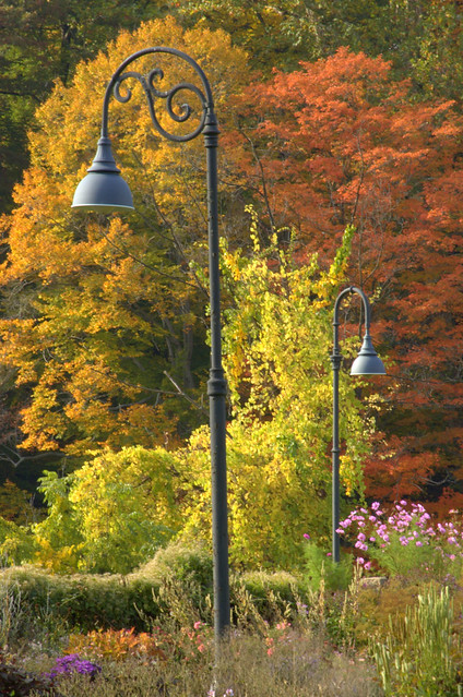 Smith College Lamp posts with fall Colors, MA