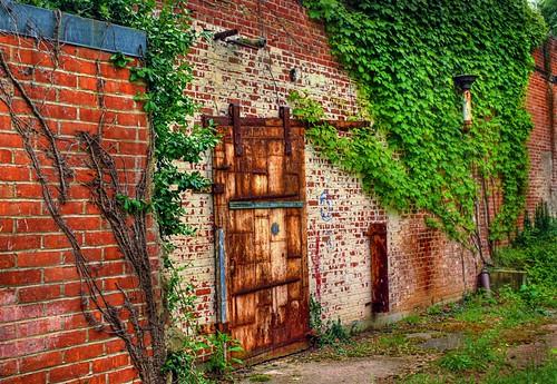 ohio brick ivy textures doorway abandonded hdr yellowsprings rustydoor oldantiochtheatre