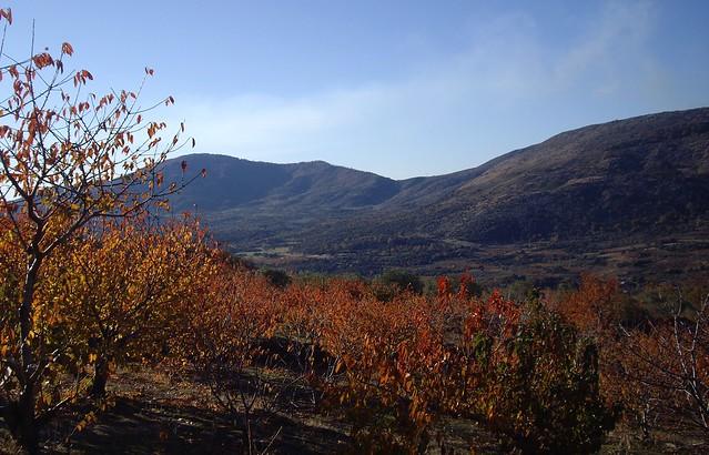 Otoño en el valle del Jerte