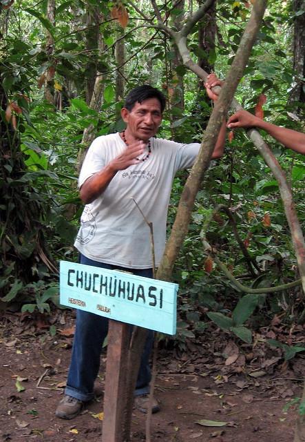 Jungle Medicine Man