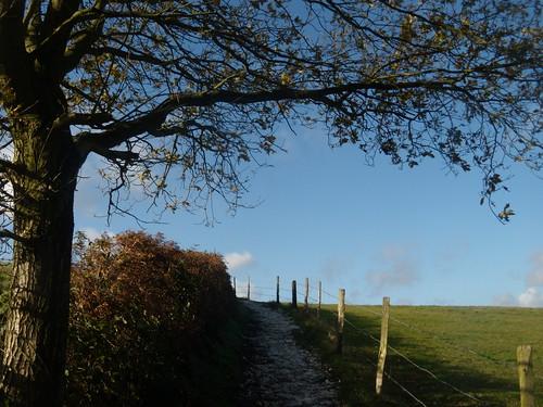 Blue skies, white path Knockholt Circular