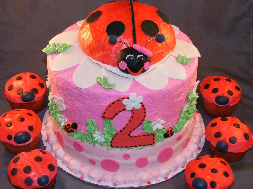 Astounding Ladybug Birthday Cake Christy Lacy Flickr Personalised Birthday Cards Veneteletsinfo