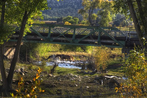 horse bridge river durango colorado 200909 crossing fall foliage autumn floridariver