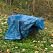 Permaculture: cover with a tarp!