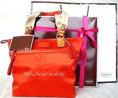Coach bag | by Honey Tee
