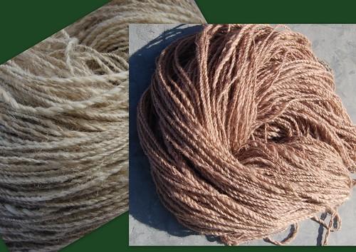 Padouk dyeing   by ingermaaike2