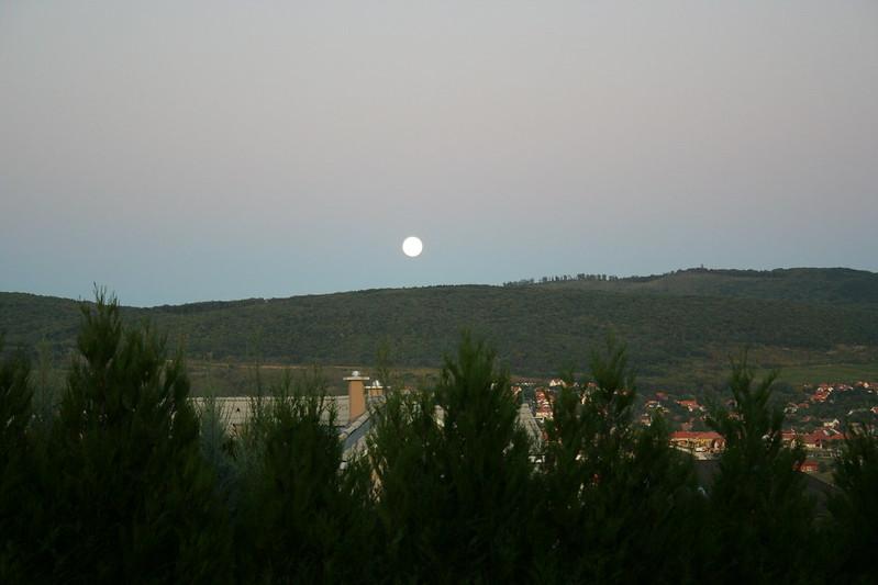 Nagy Hold