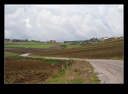 africa road landscape tn tunisia location farmland hills afrika landschaft tunisie bizerte landschap تونس الجمهوريةالتونسية republicoftunisia bizertegovernorate républiquetunisienne bechateur