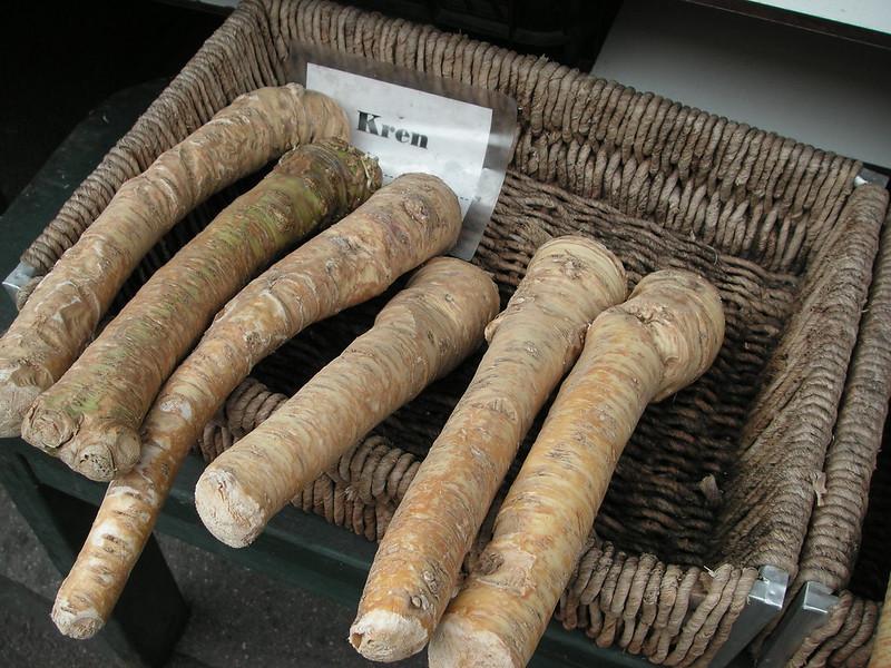 Kren --  horseradish