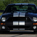 My 2009 Shelby GT500 by lclutchl