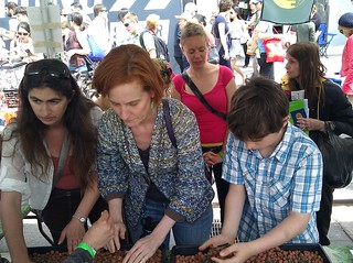 building green roof modules at the festiaval