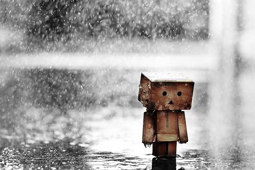 Just let it rain