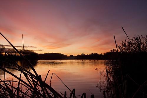 sky lake sunrise dawn swan shadows yorkshire northyorkshire castlehoward canon50d