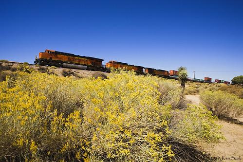 california canon outdoors trains socal transportation canondslr bnsf locomotives cajon railroads inlandempire cajonpass alltrains deserttrains canon1740f4lusmgroup sbcusa alltypesoftransport kenszok