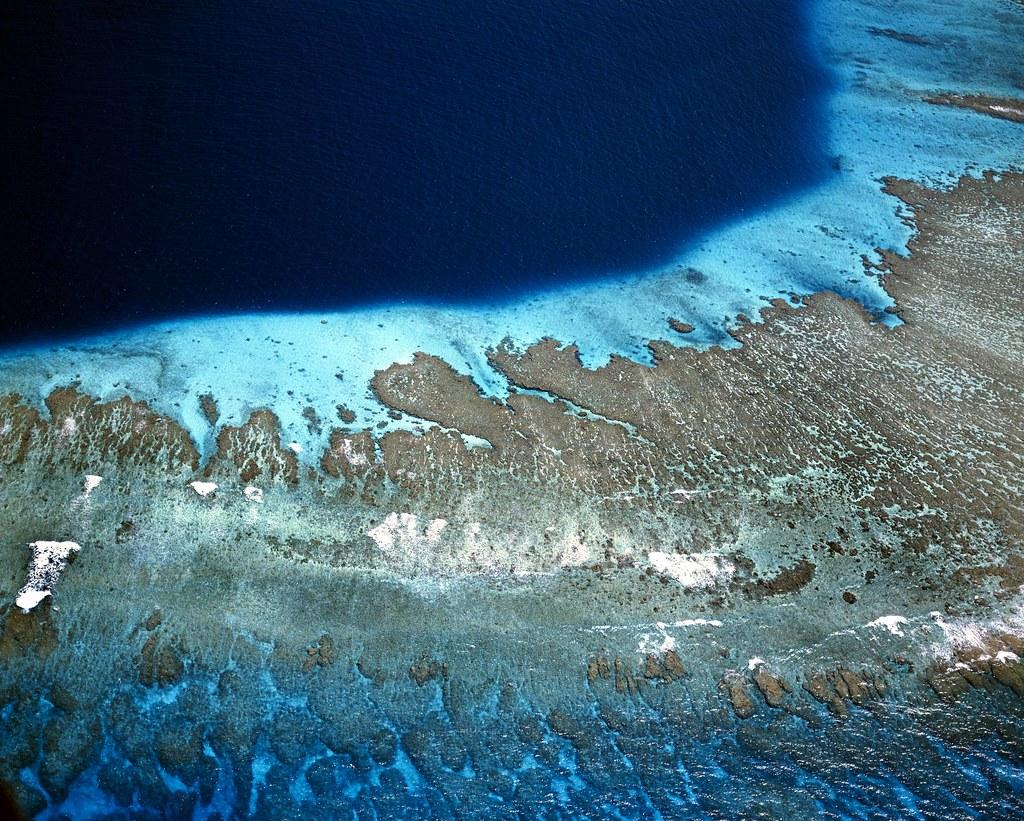 世界各國2010年前為解決生態破壞、棲地流失和野生動植物減少訂下的20個全球愛知生物多樣性目標。照片來源:全球環境基金(CC BY-NC-ND 2.0)