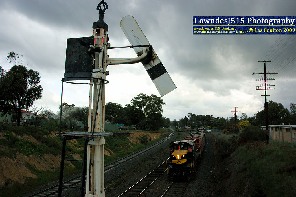 T378, S310, T382, T357 & Y145 at Broadford by LowndesJ515