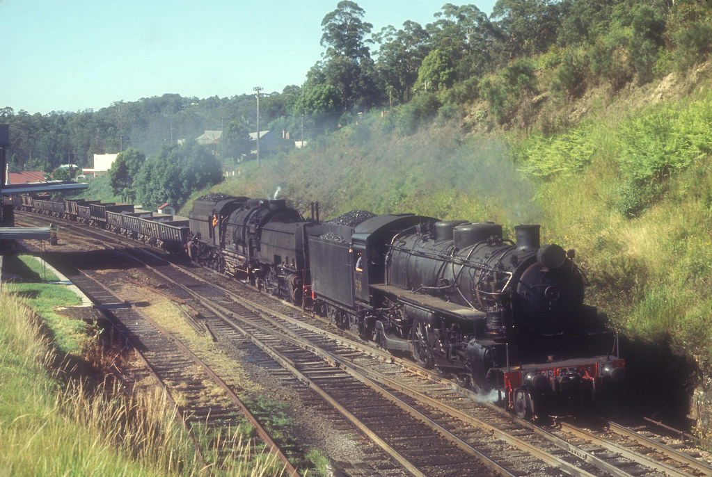 New South Wales Government Railways Baldwin 2-8-2 No 5919 + Beyer Garratt 4-8-4 + 4-8-4 No 6037 on N645 down concentrate train passing through Ourimbah, N.S.W. Australia by John Ward