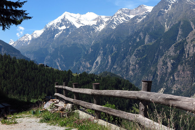 Swiss Fence
